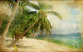 vintage, beach, Coast, palms
