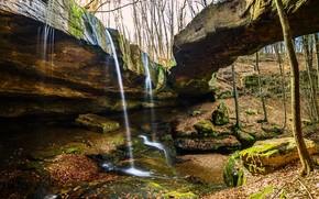 秋, 岩石, 瀑布, 树, 性质
