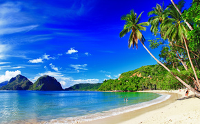 Palmen, Coast, Strand, Berge, Islands, Palawan, Philippinen
