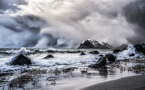 blizzard, Coast, rocks, Lofoten Islands, norway