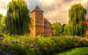家, 城堡, 树, 花卉, 景观