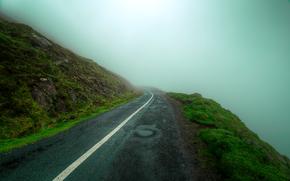 stradale, nebbia, paesaggio