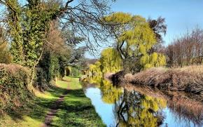 канал, деревья, тропинка, пейзаж