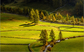 поля, речка, дорога, деревья, пейзаж