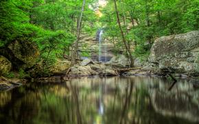 瀑布, 岩石, 树, 性质