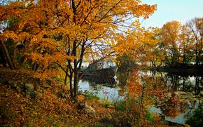 осень, река, деревья, причал, корабль, пейзаж