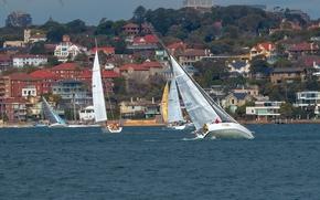 Australia, Сиднейская бухта, Sydney, Сидней, Sydney Harbour, Австралия, яхты, регата, здания