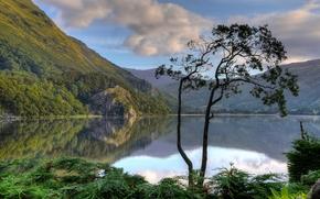 Gwynant Lake, Nant Gwynant valley, Snowdonia National Park, Snowdonia, Wales, england, Snowdonia, Wales, England, lake, Mountains, tree, reflection