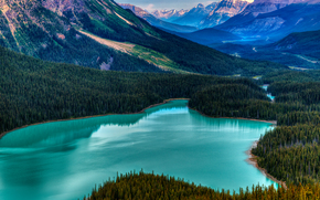 Peyto Lake, Banff, Alberta, Canada, lake, Mountains, trees, landscape
