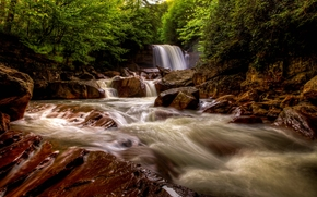 Douglas Cadute, Blackwater River, West Virginia, Douglas Cadute, Blackwater River, Virginia Dell'ovest, cascata, fiume, pietre, foresta