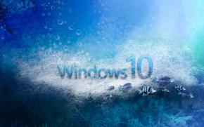 windows 10, wallpaper, обои