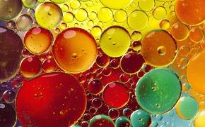 пузыри, мыло, шампунь