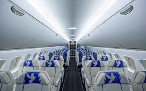 фотокартина, печать на холсте на заказ Украина ArtHolst Пассажирский, салон, самолет, МС-21, ЯК, авиация, кресло, голубь