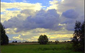 Вечер, небо, облока, тучи, поле, дерево, трава, пейзаж