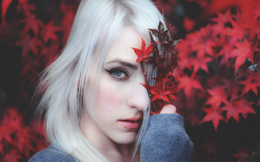 face, portrait, view, maple, blonde, foliage, mood