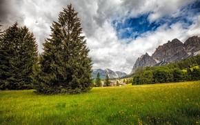 Dolomitas, Italia, campo, Montañas, árboles, paisaje