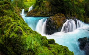 Spirit Falls, Columbia River Gorge, Washington, Columbia River Gorge, Washington, waterfall, cascade, river, stones, moss, fern, forest