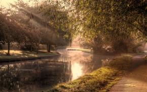 parque, canal, carretera, árboles, sol, paisaje