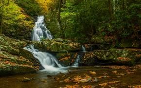 осень, лес, речка, скалы, природа