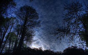 noche, paisaje, cielo