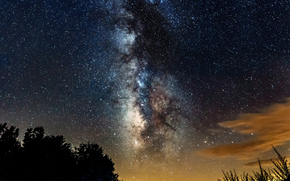 cielo, Stella, notte, Via Lattea, spazio, alberi