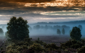 morning, Mist, Iping Common, West Sussex, england, panorama