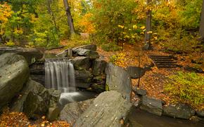 automne, parc, forêt, arbres, Rocks, cascade, nature