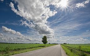 road, field, tree, sky, clouds, landscape