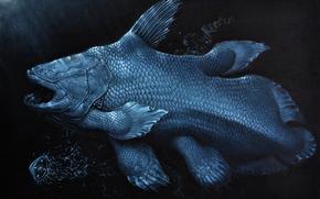 Древние животные, милая рыбка, под водой