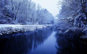 冬天, 河, 森林, 树, 景观