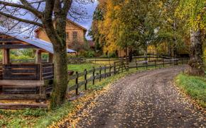 осень, дорога, деревья, забор, дома, пейзаж