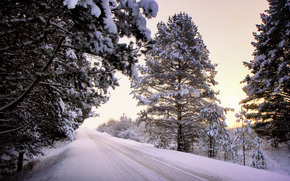sunset, winter, road, landscape