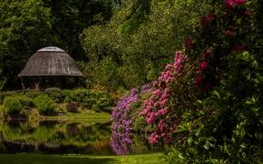 Schloss Lütetsburg, Lütetsburg Castle Park, Lower Saxony, Germany, Castle lütetsburg, Lower Saxony, Germany, Castle Park, park, pond, Rhododendrons, arbor