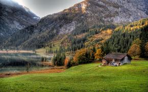 Mountains, lake, field, trees, cabin, landscape