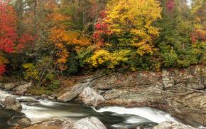 осень, река, скалы, деревья, природа, панорама