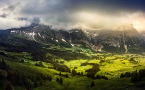 Grindelwald, Suiza, perspectiva de encima, Montañas, campo, casa, árboles, paisaje