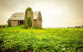 field, abandoned house, sunset, landscape