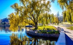 Lake Burley, Australia, озеро, парк, деревья, пейзаж