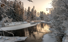 зима, речка, лес, деревья, пейзаж