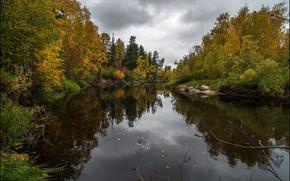 осень, речка, деревья, природа