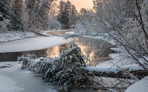 река, зима, лес, деревья, закат, природа