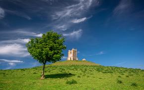 campo, árvore, torre, paisagem