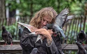sem casa, Pombos, Nova Iorque, aves, Nova York, amor, humor