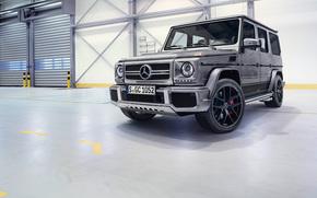 Mercedes-Benz, G-Class, Gelandewagen, panorama