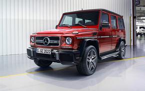 Mercedes-Benz, G-Class, Gelandewagen