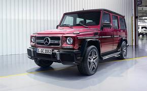 Mercedes Benz, Clase G, Geländewagen