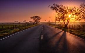 закат, дорога, забор, деревья, пейзаж