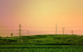 sunset, field, tower, wire, landscape