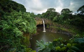 Rainbow Falls, Hawaii, cascata, pond, alberi, piante, paesaggio