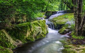 лес, речка, водопад, скалы, деревья, природа